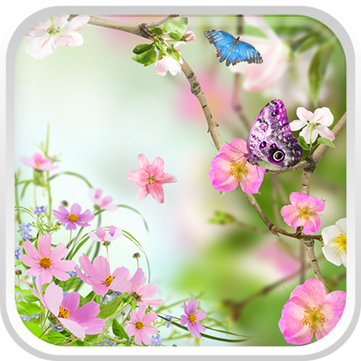 Flowers Live Wallpaper file APK for Gaming PC/PS3/PS4 Smart TV