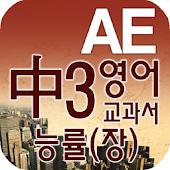 중3 교과서 영단어 능률(장)