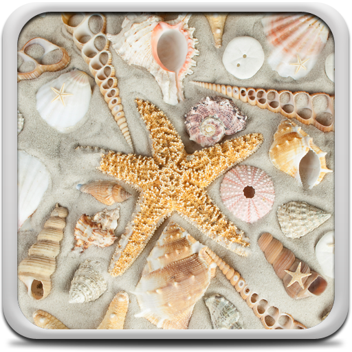 Seashells Live Wallpaper Icon