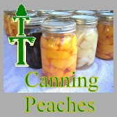 Canning Fresh Peaches