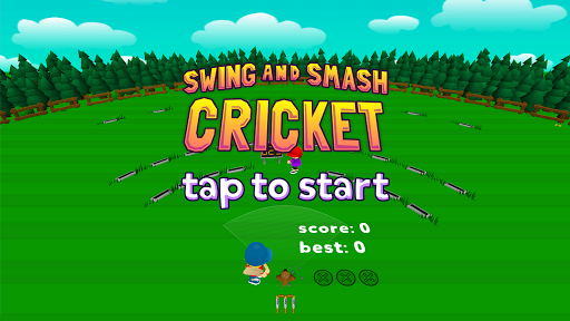 Swing and Smash Cricket