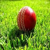 Howzat Cricket 2D
