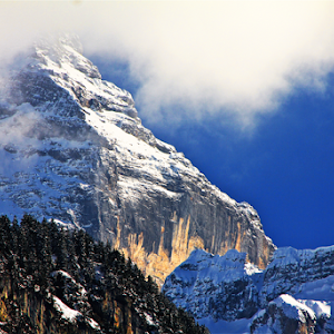 Jungfrau72-IMG_5369.jpg