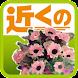 近くの花屋(e-shops ローカル)