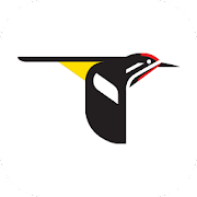 Merlin Bird ID by Cornell Lab of Ornithology 1.5.1 Icon