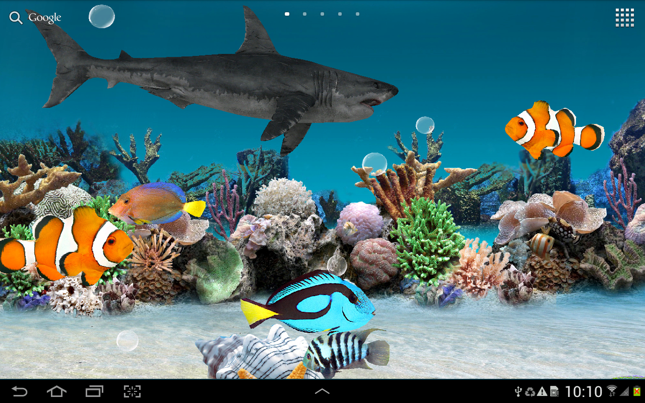 Aquarium fish tank download - 3d Aquarium Live Wallpaper Screenshot