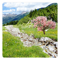 Mountain Stream Live Wallpaper icon