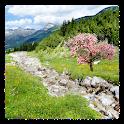 Mountain Stream Live Wallpaper
