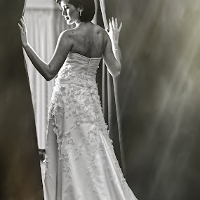 by Don Davies - Wedding Bride ( black and white, wedding, white, gown, bride )