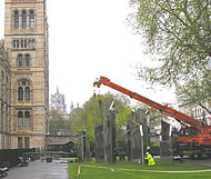 Chamberlain Crane Hire in London