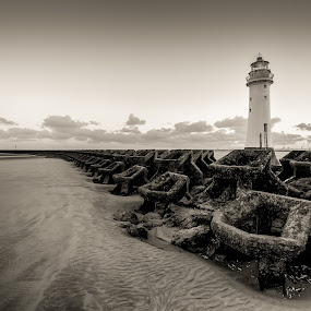 by Ryan Bedingfield - Black & White Landscapes ( perch rock )