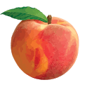 Peach State FCU icon
