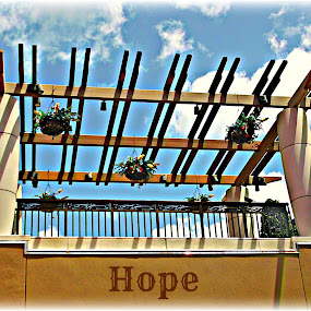 Hope by Cheryl Beaudoin - Typography Words ( level, walkway, heights, flowers, hope, , vertical lines, pwc, fall, color, colorful, nature )