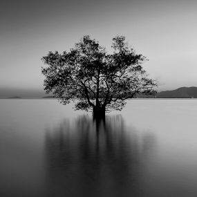 by Charliemagne Unggay - Black & White Landscapes ( black and white, b&w, landscape )