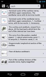 玩免費醫療APP|下載Gray's Anatomy 2012 app不用錢|硬是要APP