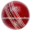 England Cricket News 2013 logo