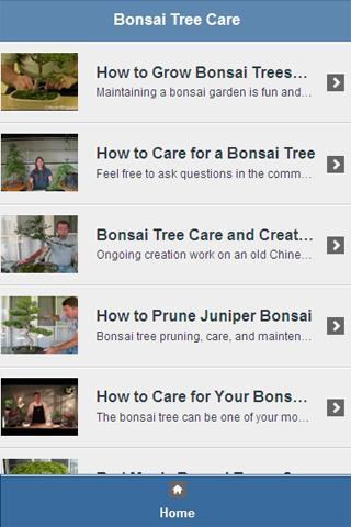 Bonsai Tree Care Video