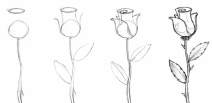 top apprendre a dessiner une rose images for pinterest tattoos. Black Bedroom Furniture Sets. Home Design Ideas