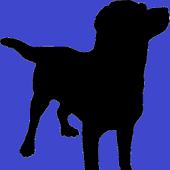 Service Dog Handler Assistant