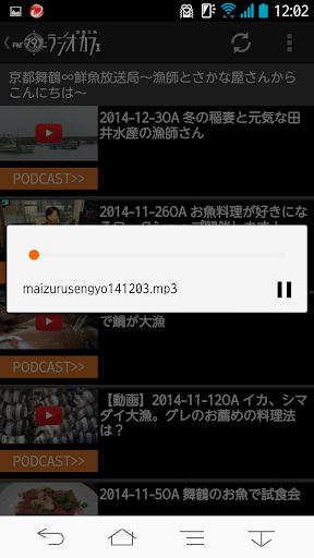 Radio Cafe 2.0.9 Windows u7528 4
