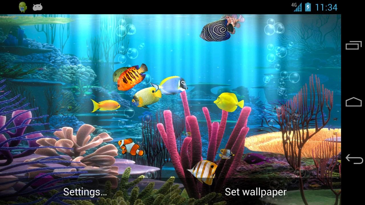Aquarium fish tank download - Fish Aquarium Free Screenshot