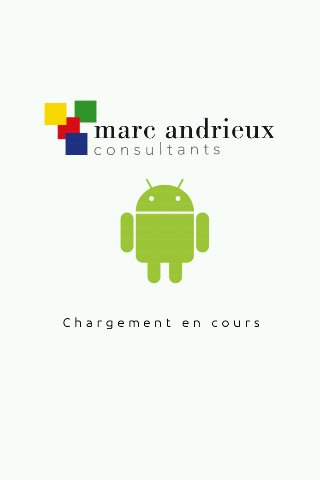 Marc Andrieux Consultants- screenshot