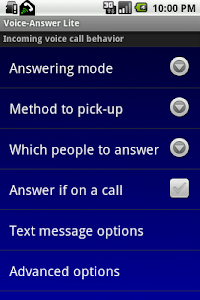 Voice-Answer Lite screenshot 0