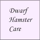 Dwarf Hamster Care icon
