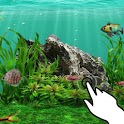 Magic touch: Aquarium tropical icon