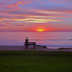 The Sun is This Big by Brendan Mcmenamy - Novices Only Landscapes ( del mar, san diego, woman, sunset, sun )
