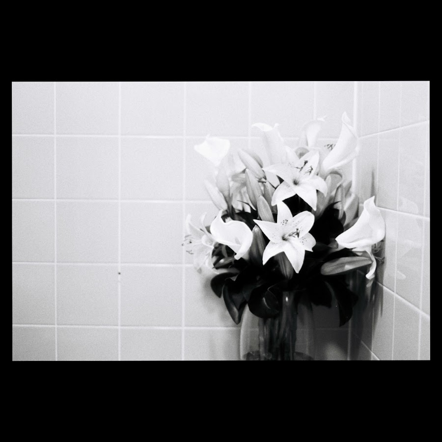 Flowers in the men's room by Adrian Stock - Black & White Flowers & Plants ( film, vase, tiles, black and white, lilies, flowers )
