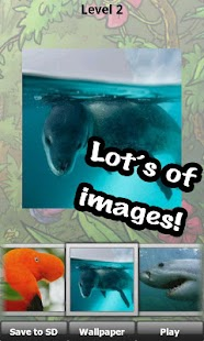 Wild animals puzzle: Jigsaw - screenshot thumbnail