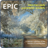 Freezing Rain & Winter Sounds