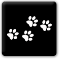 Parker Vet icon