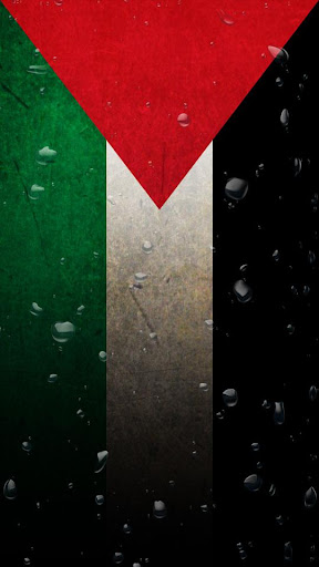 Palestina Wave LWP