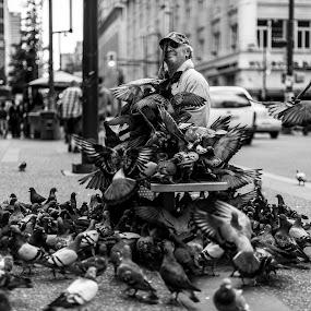 Birdman of Granville by Scott Hemenway - People Street & Candids ( photograpy, canada, d800, street, sdhpics, nikon, vancity, people, gvrd, vancouver )
