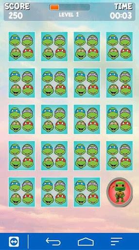 Ninja Turtles Memory Card
