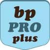 BP Classifieds Posting Pro