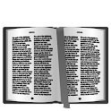 KJV Bible Plugin icon