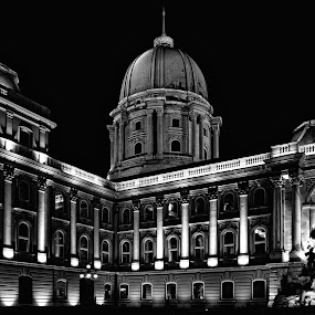 Budapest by Jonatan Kubena - Black & White Buildings & Architecture