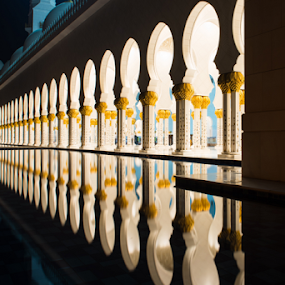 Pillars of Sheikh Zayed Mosque by Aamir Munir - Buildings & Architecture Architectural Detail ( night view, night photography, architecture, sheikh zayed mosque, pillars, places of worship )