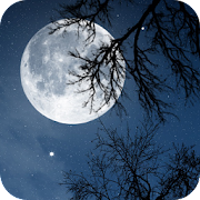 App Relax Night ~ Nature Sounds APK for Windows Phone