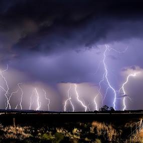 Lightning by Aldus Smith - Landscapes Weather ( lightning, potchefstroom )