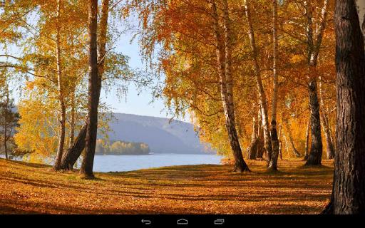 Autumn Wallpaper screenshots 11