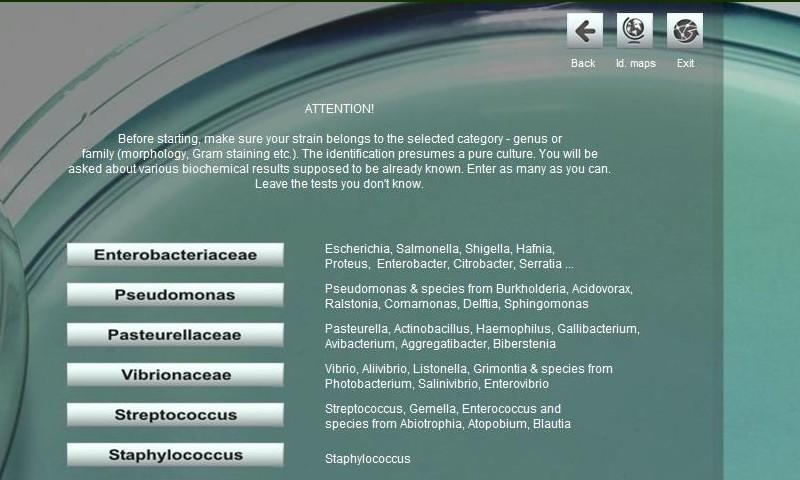 Bacterial identification ABIS - screenshot