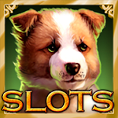 Casino Slots - Jackpot Machine