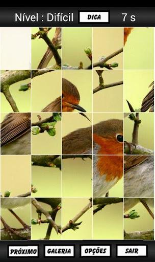 飞扬的鸟 - 拼图