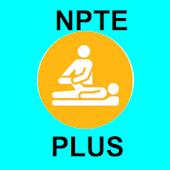 NPTE Flashcards Plus