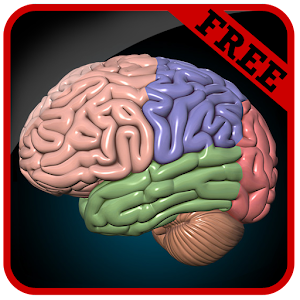 Brain Game for PC and MAC
