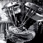 Training Shovelhead Harley icon